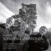 Hummel: Sonatas & Variations by Various Artists