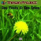 Des Fleurs et des orties by Thesan Project