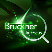 Bruckner - In Focus by Various Artists