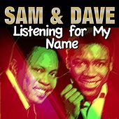 It Feels so Nice von Sam and Dave
