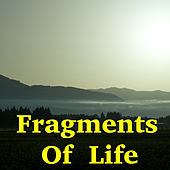 Fragments Of Life von Various Artists