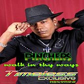 Walk in Thy Ways by Pinchers