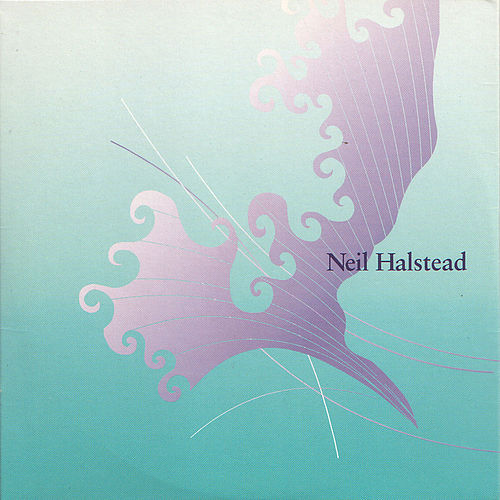 Two Stones In My Pocket by Neil Halstead