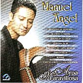 Arpa Maravillosa  Manuel Angel by Manuel Angel