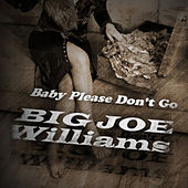 Baby Please Don't Go by Big Joe Williams