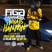 What's Hannin' (feat. Curtis Snow, Kevin Gates, Lil Soljah Slim & Dat Boy Lox) - Single by Figg Panamera
