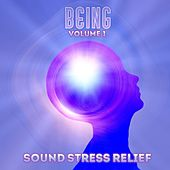 Sound Stress Relief: Being, Vol. 1 by Various Artists