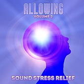 Sound Stress Relief: Allowing, Vol. 2 by Various Artists