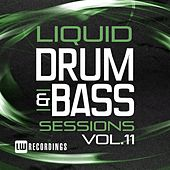 Liquid Drum & Bass Sessions, Vol. 11 - EP by Various Artists