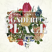 Wonderful Peace of Jesus - Single by Amy Nobles
