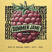 Summer Jam! (Best of 2014 - 2016) by Various Artists