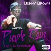 Purple Rain by Noel