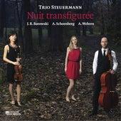 Nuit transfigurée by Trio Steuermann