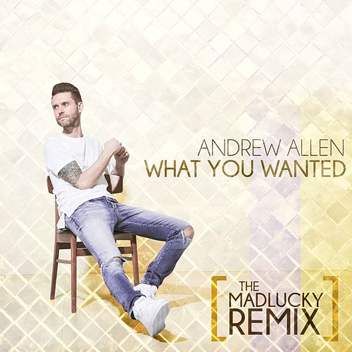 What You Wanted (The Madlucky Remix) by Andrew Allen