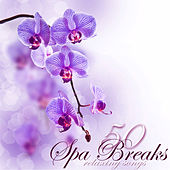 Spa Breaks 50 Relaxing Songs – Fifty Quiet Moments of Relaxation under Bamboo Shades in Your Zen Room, Emotional Peaceful Songs for Spa Day by Serenity Spa: Music Relaxation