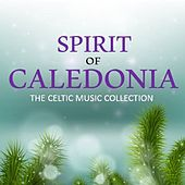 Spirit of Caledonia: The Celtic Music Collection by Various Artists