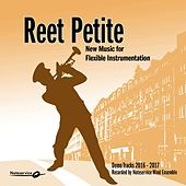 Reet Petite - New Music for Flexible Instrumentation - Demo Tracks 2016-2017 von Noteservice Wind Ensemble