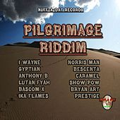 Pilgrimage Riddim von Various Artists