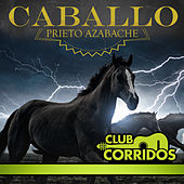Club Corridos Presenta: Caballo Prieto Azabache by Various Artists