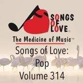 Songs of Love: Pop, Vol. 314 by Various Artists