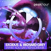 What You Say (Ken Loi Remix) by Exodus