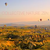 Collective Nature Zen by Massage Therapy Music