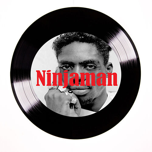 Like a We by Ninjaman