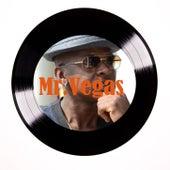 Bayde by Mr. Vegas