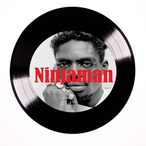 A Ninja by Ninjaman