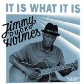 It Is What It Is by Jimmy Duck Holmes