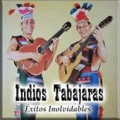Éxitos Inolvidables by Los Indios Tabajaras