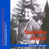 Sáme jiena - Samiska röster - Sámi Voices by Various Artists