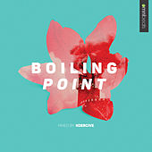 Boiling Point by Various Artists