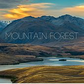 Mountain Forest by Yoga Music