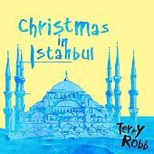 Christmas in Istanbul by Terry Robb