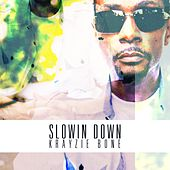 Slowin Down by Krayzie Bone