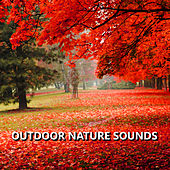 Outdoor Nature Sounds by Sounds Of Nature