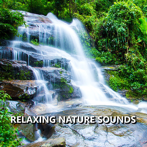 Relaxing Nature Sounds by Sounds Of Nature