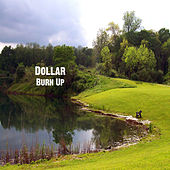 Burn Up by Dollar
