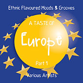 A Taste of Europe, Pt. 1 (Ethnic Flavoured Moods & Grooves) by Various Artists