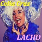 Lacho von Celia Cruz