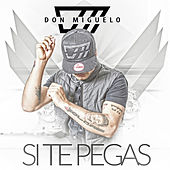 Si Te Pegas by Don Miguelo