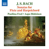 Bach: Sonatas for Flute & Harpsichord by Pauliina Fred