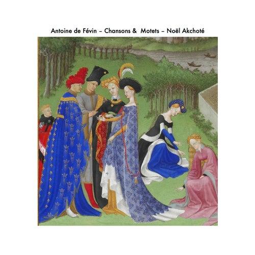 Antoine de Févin: Chansons et motets (Arr. for Guitar) by Noel Akchoté