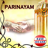 Parinayam by Various Artists
