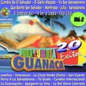 Pura Cumbia Guanaca, Vol. 2 by Various Artists