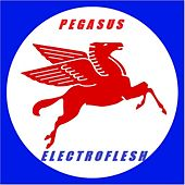Pegasus by Electroflesh