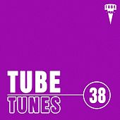Tube Tunes, Vol.38 by Various Artists