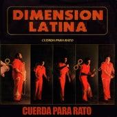 Cuerda para Rato by La Dimensión Latina