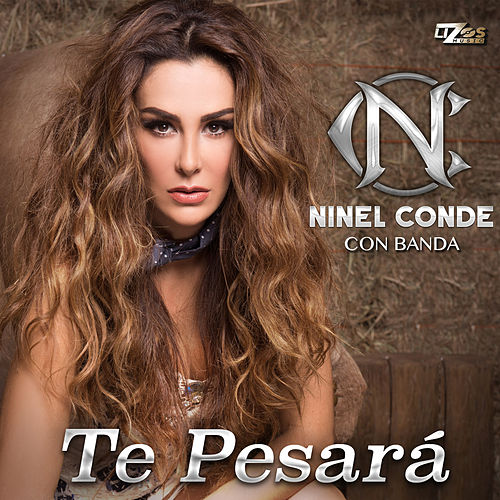 Te Pesará - Single by Ninel Conde